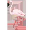 Pink Flamingo ##STADE## - coat 68