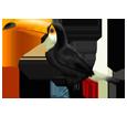 Toucan ##STADE## - coat 46