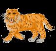 Tiger ##STADE## - coat 1340000004
