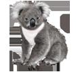 Koala ##STADE## - coat 52